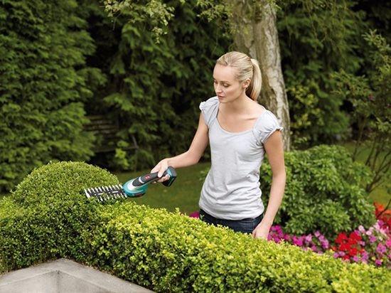 Как выбрать садовый кусторез